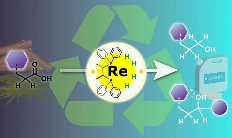 Chemists turn metal catalysis on its head for a sustainable future