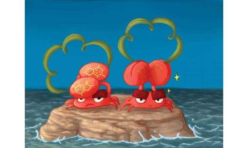 Chiral crabs