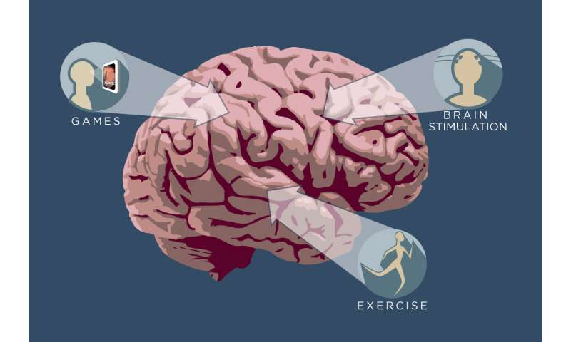 Cognitive cross-training enhances learning, study finds