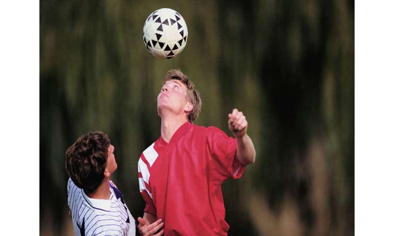 College students seem to take longer to recover from concussion