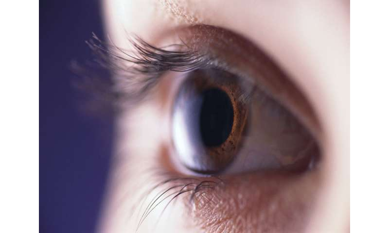 Conjunctivitis prevalence higher for adult women than men