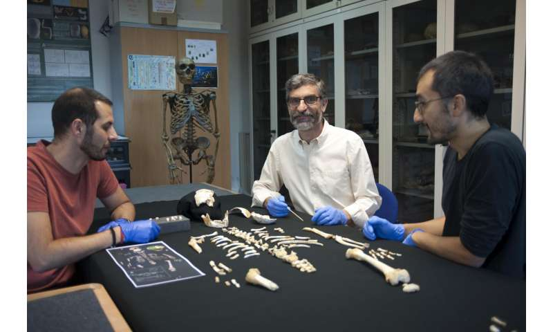 CSIC reconstructs how Neanderthals grew, based on an El Sidrón child