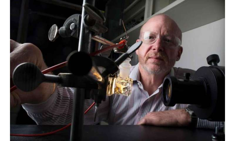 Decades after developing technology, NREL sets new solar-to-hydrogen record