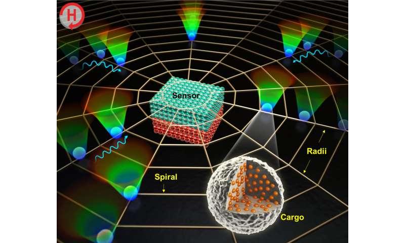 DGIST develops 20 times faster biosensor
