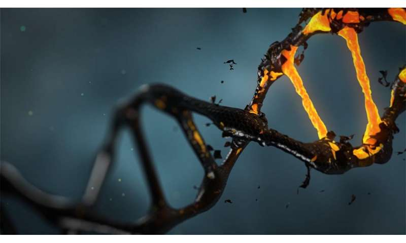 Dating DNA manga