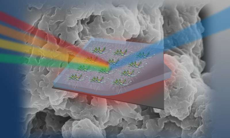 DNA: The next hot material in photonics?