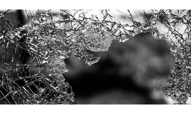 Do violent communities foster violent kids?