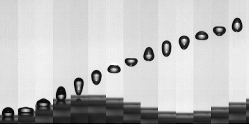 Drops of water found to spring from oscillating surface faster than the surface moves