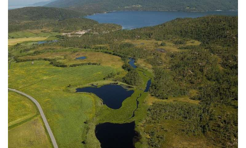 Effective restoration of aquatic ecosystems