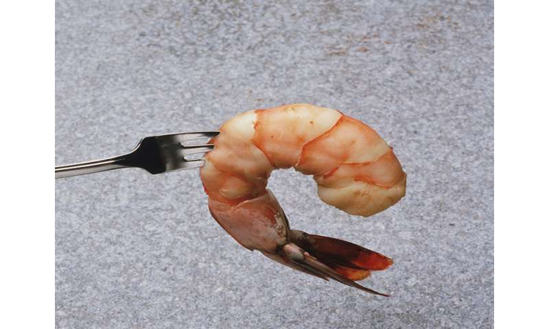Exercise-induced anaphylaxis due to shrimp intake described