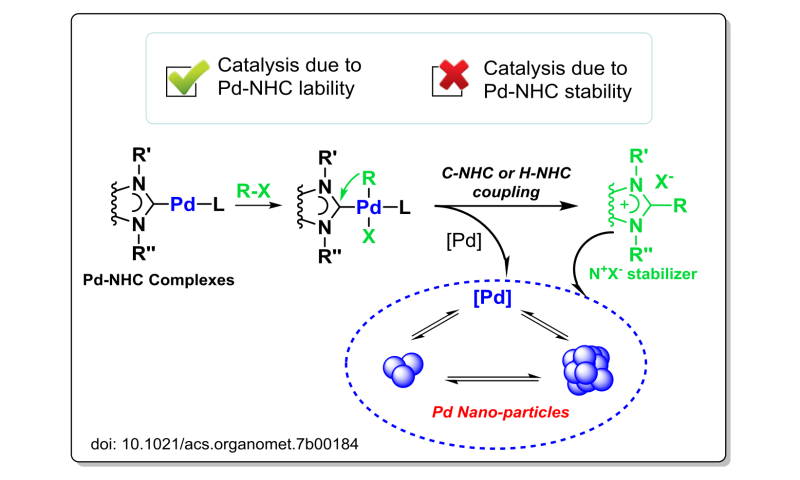 Facile decomposition of Metal-NHC complexes under catalytic conditions and the key role of NHC-stabilized nanoparticles