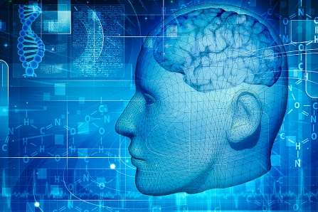 Faulty genomic pathway linked to schizophrenia developing in utero, study finds