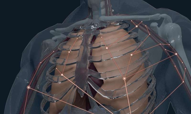 First atlas of B-cell clones in body forms new foundation for infectious disease research