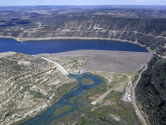 Fish to benefit if large dams adopt new operating approach