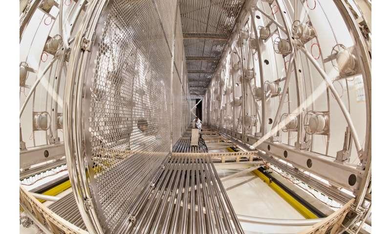 Follow the fantastic voyage of the ICARUS neutrino detector