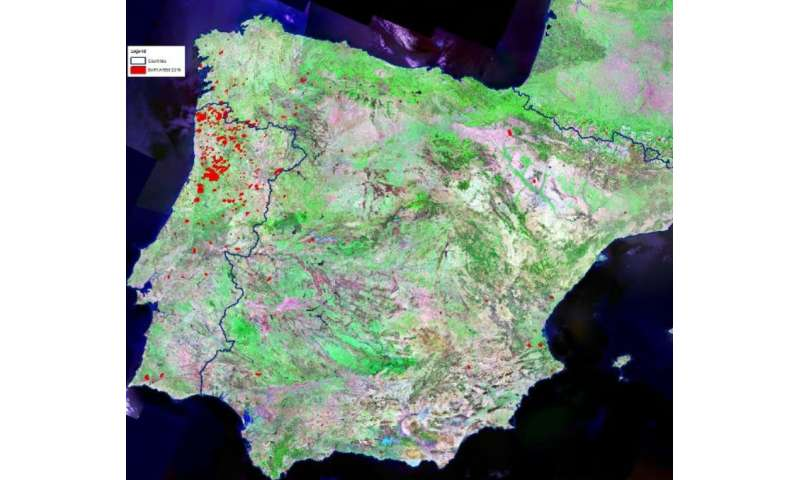 Map Of Fires In Spain 2017.Forest Fires On The Rise As Study Warns Of Danger To Air Quality