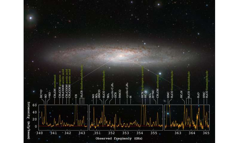 Forest of molecular signals in star forming galaxy
