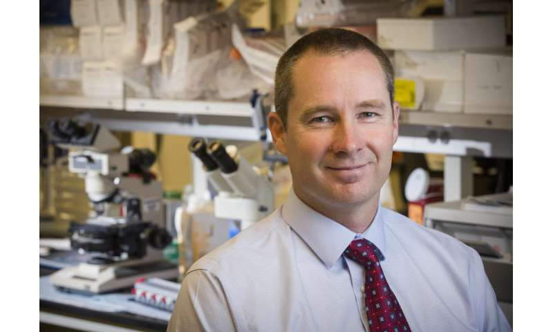 Fred Hutch studies advance methods to avert toxicity that can accompany immunotherapy