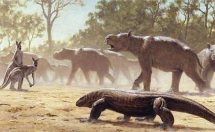 Giant Australian marsupials were like no other