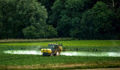 Glyphosate is the main component in the best-selling herbicide Roundup produced by the US agro-chemicals giant Monsanto, but the