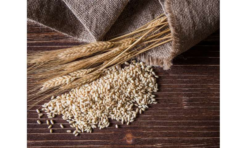 Going 'gluten-free' not for everyone