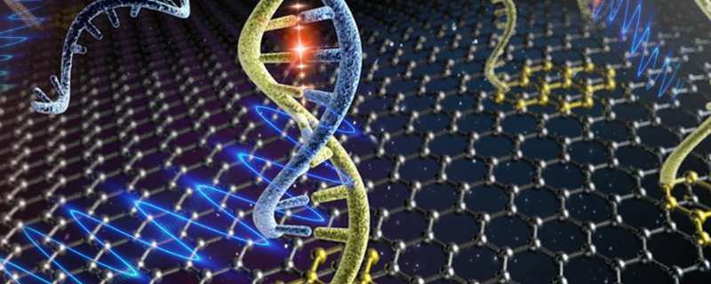 Graphene sensors detect HIV DNA