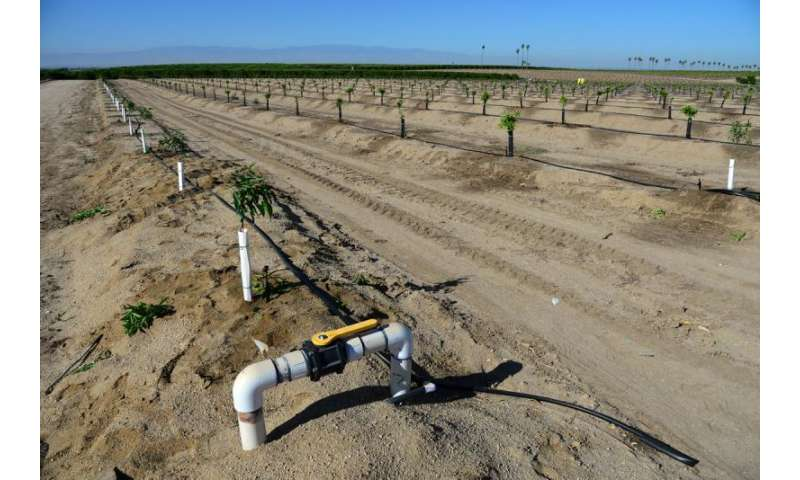 Groundwater overuse has permanently reduced San Joaquin Valley's water storage ability