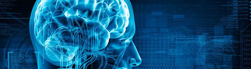 Hacking the human brain with social marketing