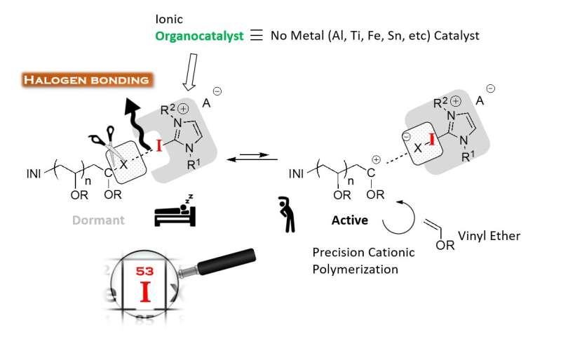 Halogen bonding-mediated metal-free controlled cationic polymerization