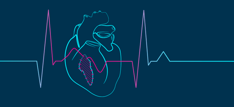 Heart tissues of different origins can 'beat' in sync