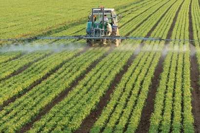 Heavily used pesticide linked to breathing problems in farmworkers' children