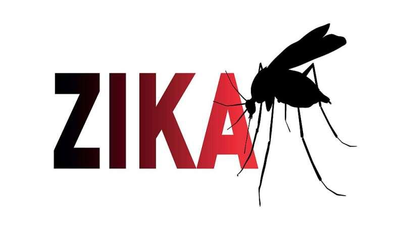 'Herd immunity' may be curbing U.S. zika numbers