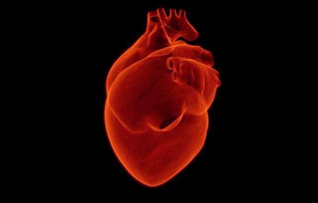 High BMI and blood pressure create a heavy heart