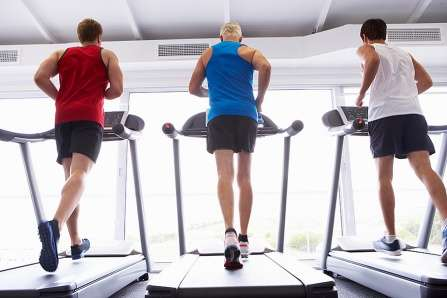 High intensity interval training can reverse frailty at advanced age, preclinical study finds