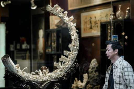 Hong Kong is a major hub for ivory sales and announced last year that it would ban the import and export of the goods, but later