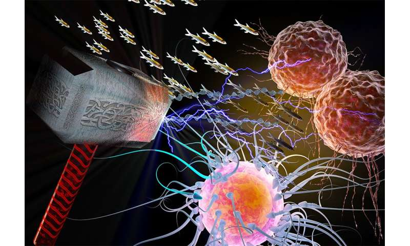 How defeating THOR could bring a hammer down on cancer