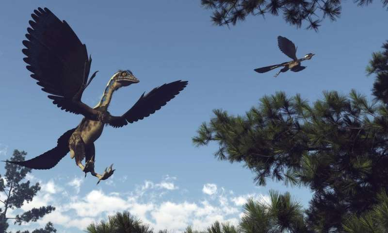 How did dinosaurs evolve beaks and become birds? Scientists think they have the answer