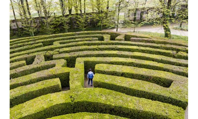 How to escape a maze – according to maths