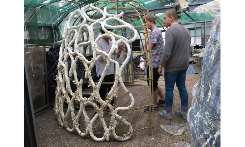 How to grow a structure using 'mushroom sausages'