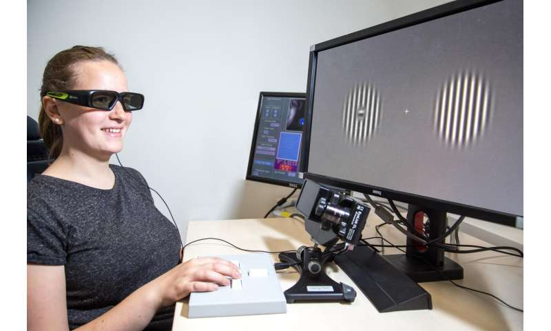 Humans rely more on 'inferred' visual objects than 'real' ones
