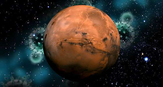 If past life on Mars existed, it co-evolved with the Martian environment
