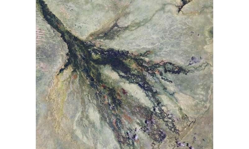 Image: Copernicus Sentinel-2A satellite captures Botswana wetlands