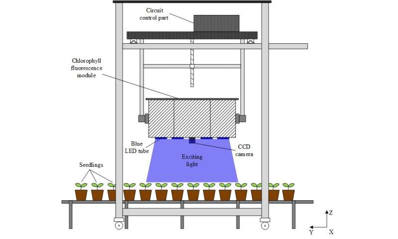 Innovative system images photosynthesis to provide picture of plant health