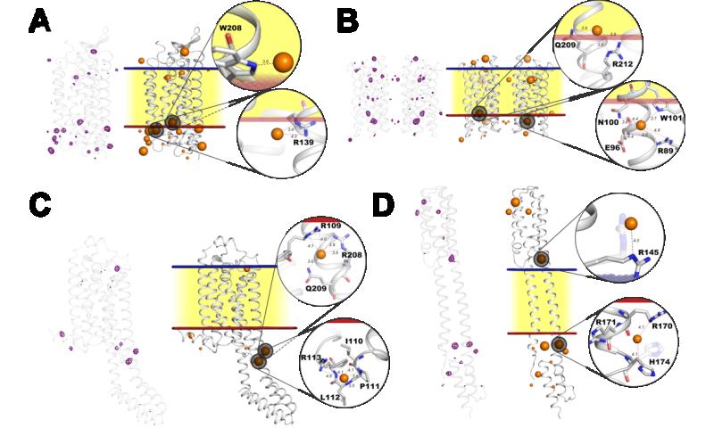 Iodine ensures successful solution of biomolecule structures