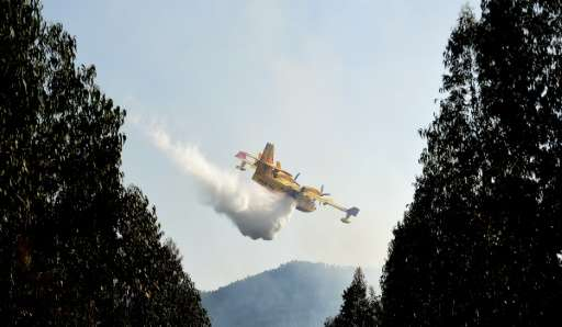 Italy, France and Spain have sent water-bombing planes to battle the blaze