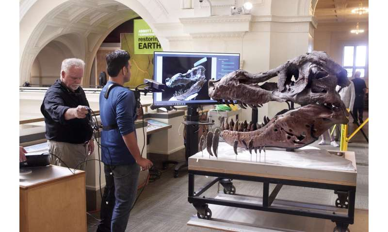 Kinect scan of T. rex skull addresses paleontological mystery