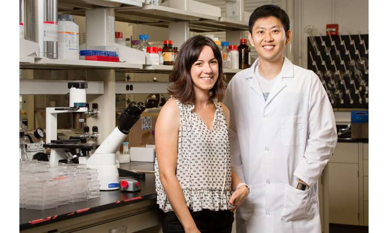 Large, crystalline lipid scaffolds bring new possibilities to protein, drug research