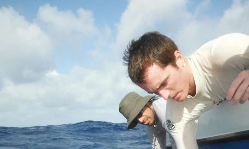 Large marine protected areas effectively protect reef shark populations