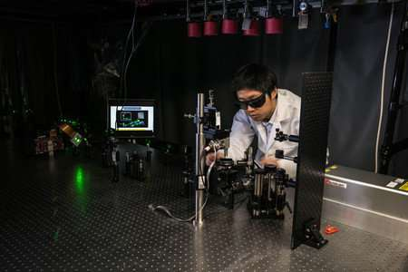 Laser-imaging technology provides improved method for peering inside living creatures