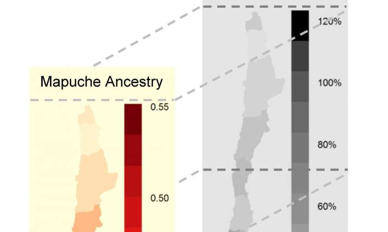 Latin-Americans with different Native-American ancestry show different health risks